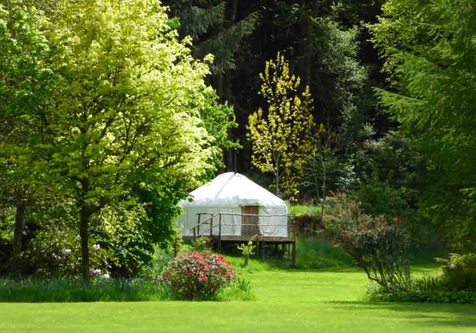 Woodland Yurt Summer Retreats