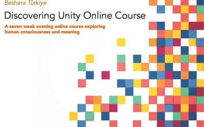 Discovering Unity